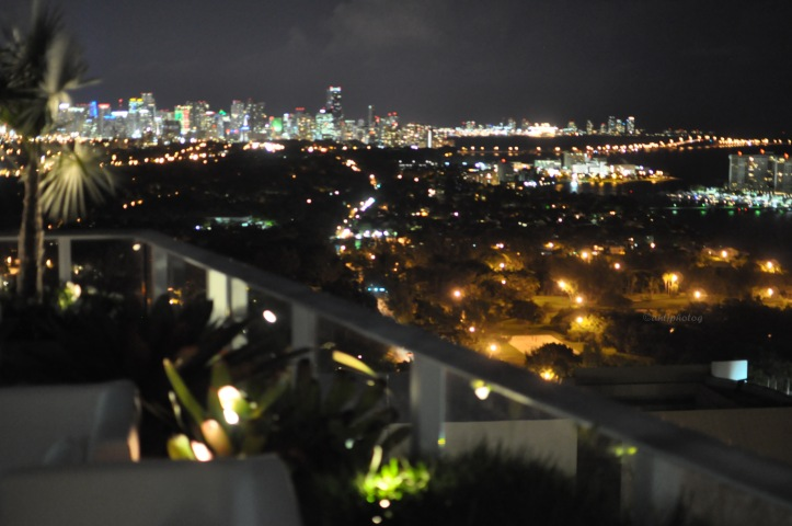 A Private Investor hosts an evening at her penthouse residence in Miami.