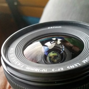 View Through My Lens